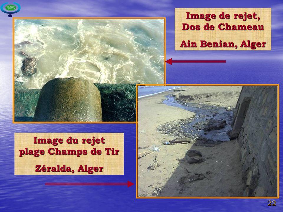Image de rejet, Dos de Chameau Image du rejet plage Champs de Tir