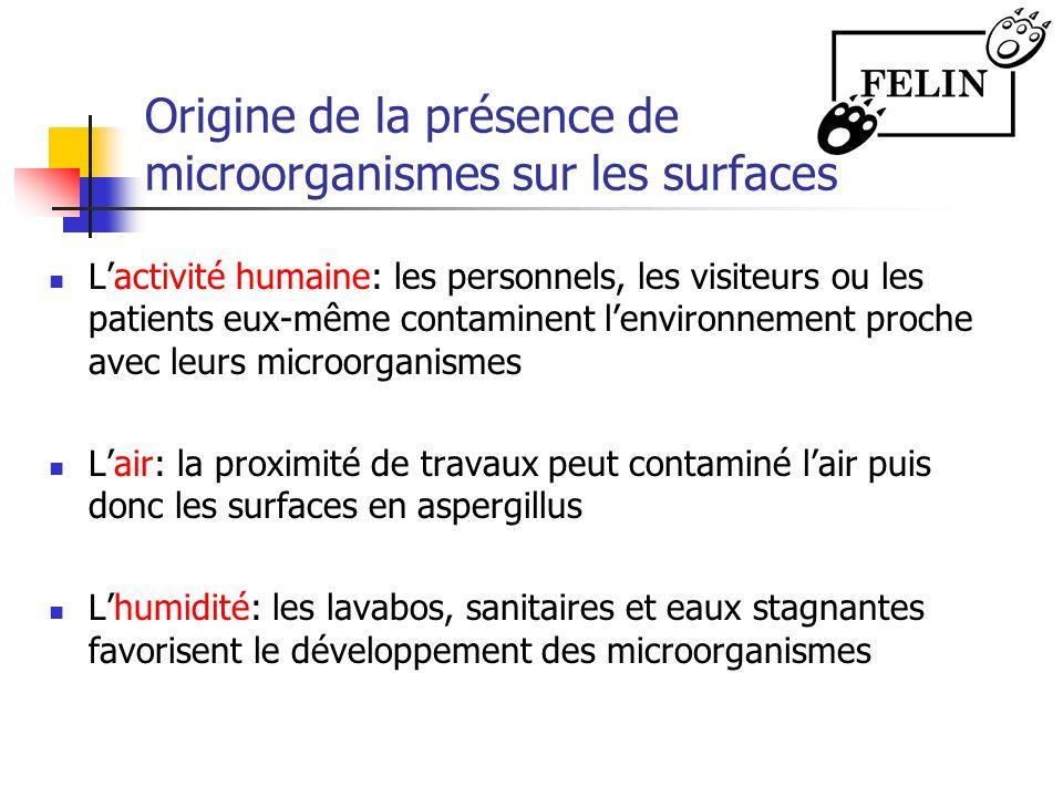 Origine de la présence de microorganismes sur les surfaces