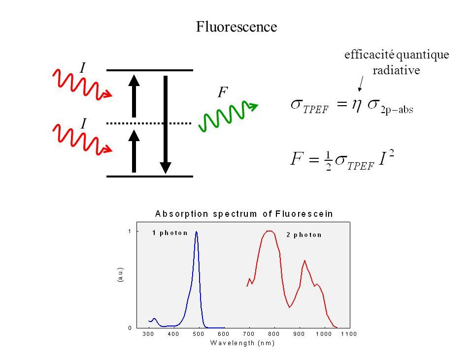 Fluorescence efficacité quantique radiative I F I