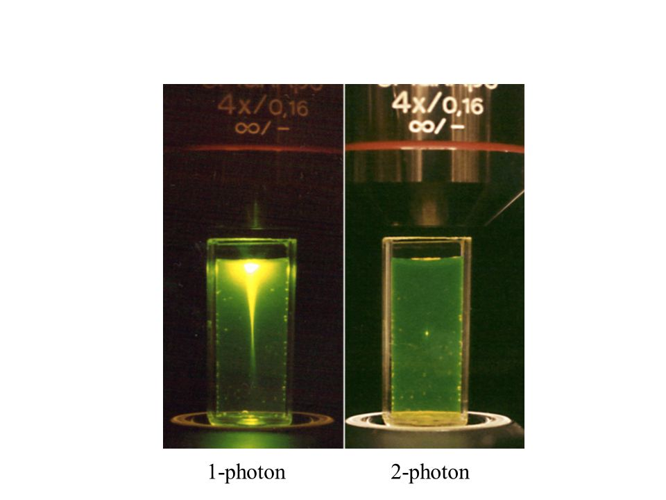 1-photon 2-photon