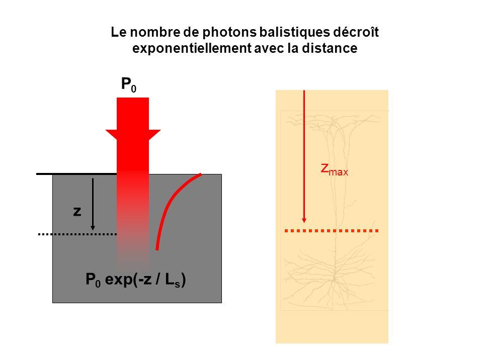 Le nombre de photons balistiques décroît exponentiellement avec la distance