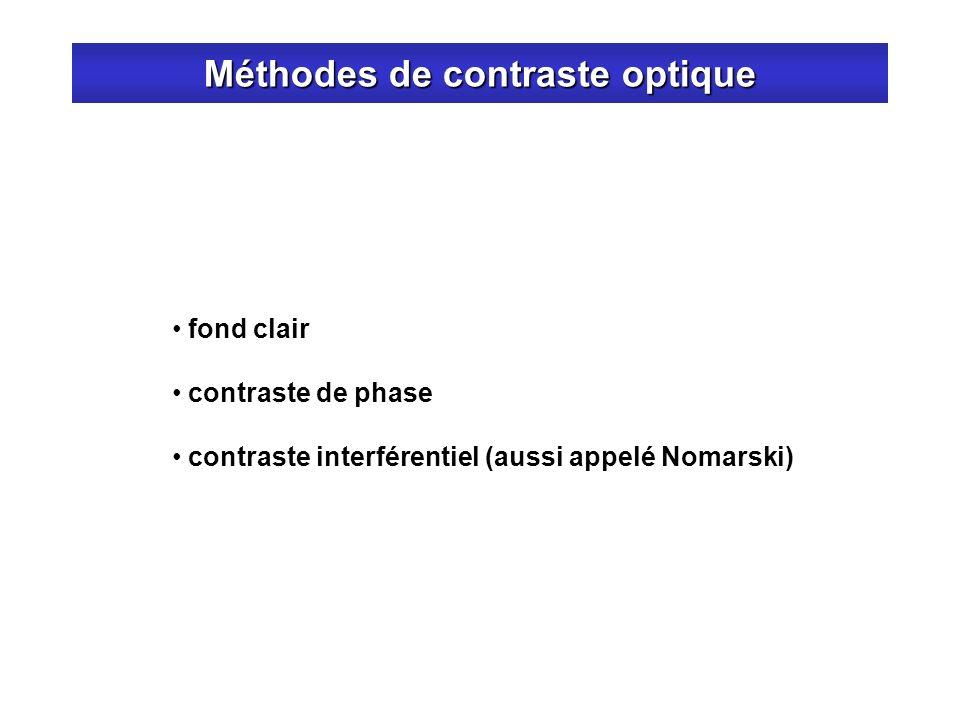 Méthodes de contraste optique