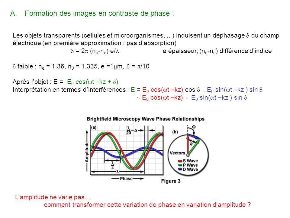 Formation des images en contraste de phase :