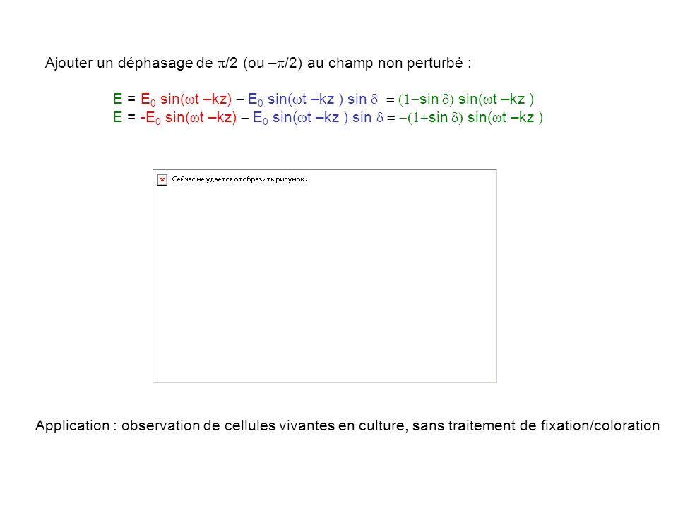 Ajouter un déphasage de p/2 (ou –p/2) au champ non perturbé :