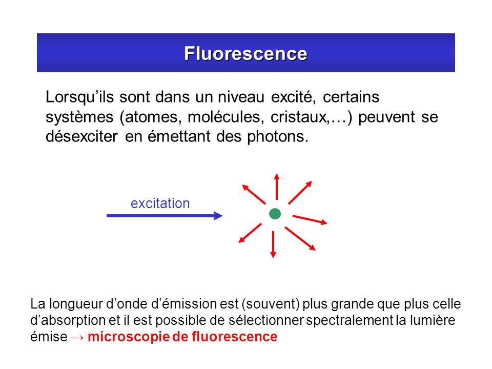 Fluorescence Lorsqu'ils sont dans un niveau excité, certains systèmes (atomes, molécules, cristaux,…) peuvent se désexciter en émettant des photons.