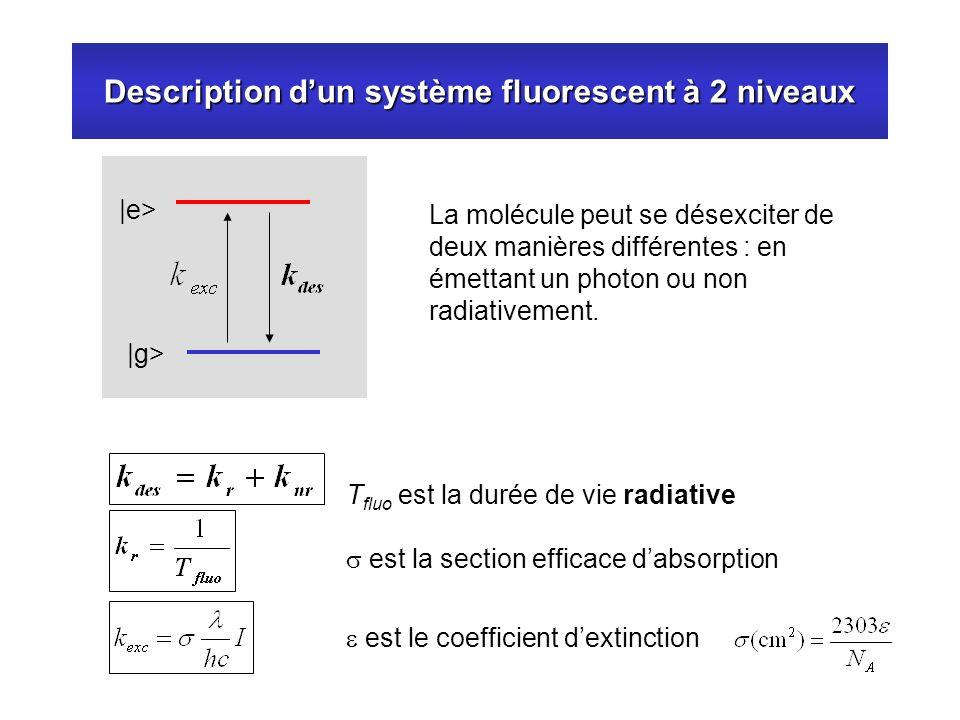 Description d'un système fluorescent à 2 niveaux