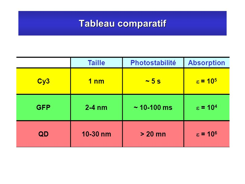 Tableau comparatif Taille Photostabilité Absorption Cy3 1 nm ~ 5 s