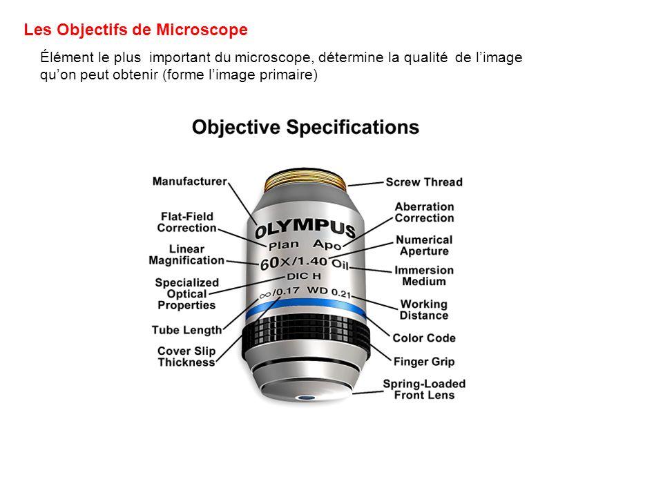Les Objectifs de Microscope