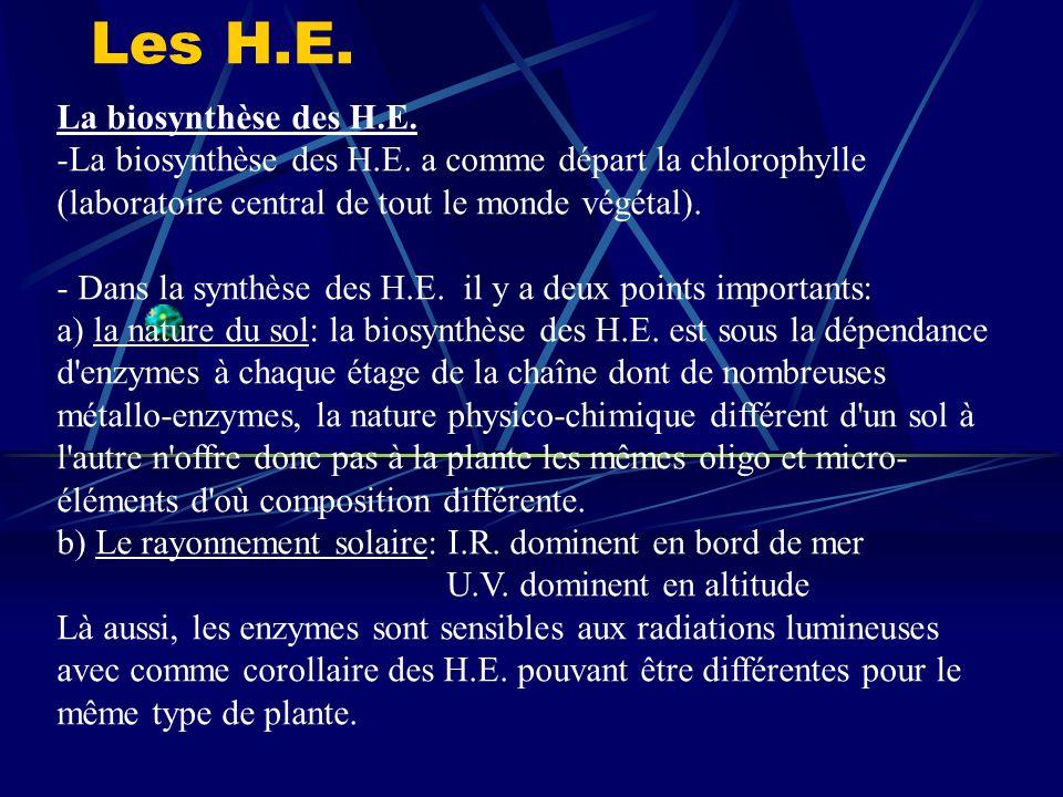 Les H.E. La biosynthèse des H.E.