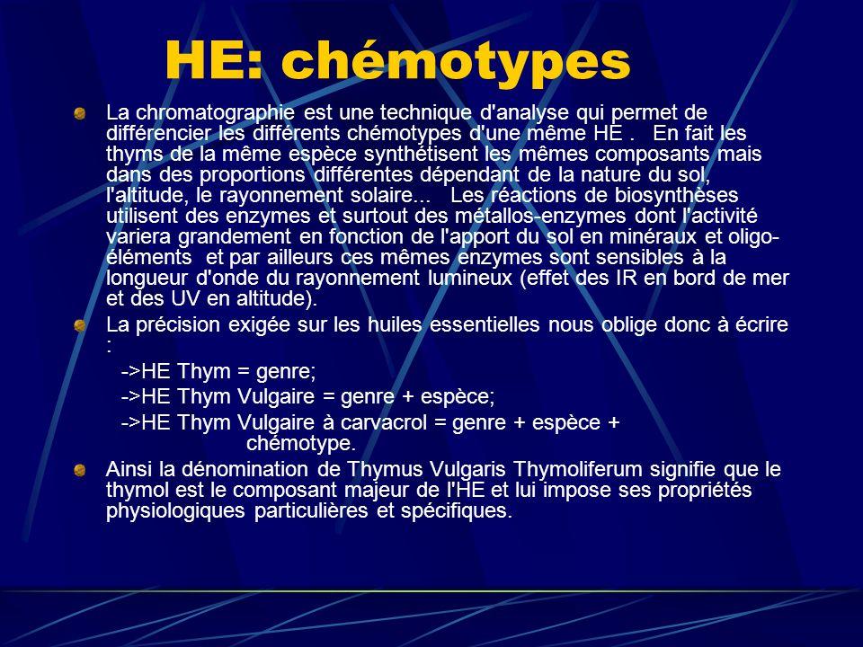 HE: chémotypes