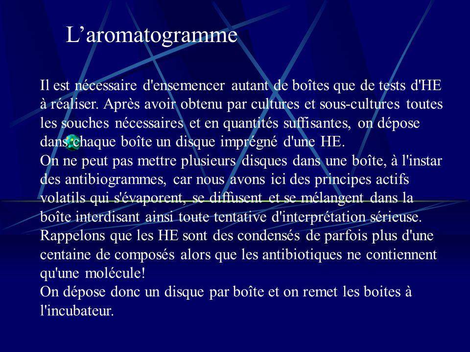 L'aromatogramme