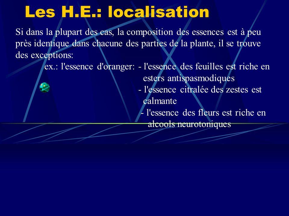 Les H.E.: localisation