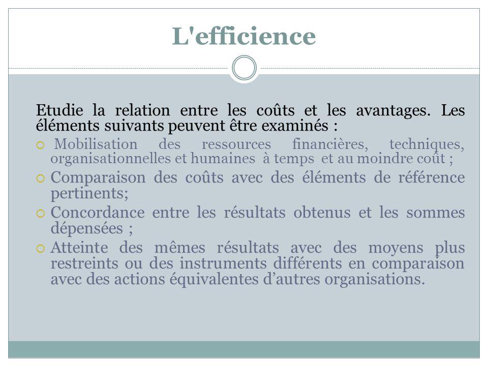 L efficience Etudie la relation entre les coûts et les avantages. Les éléments suivants peuvent être examinés :