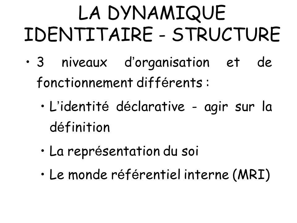 LA DYNAMIQUE IDENTITAIRE - STRUCTURE