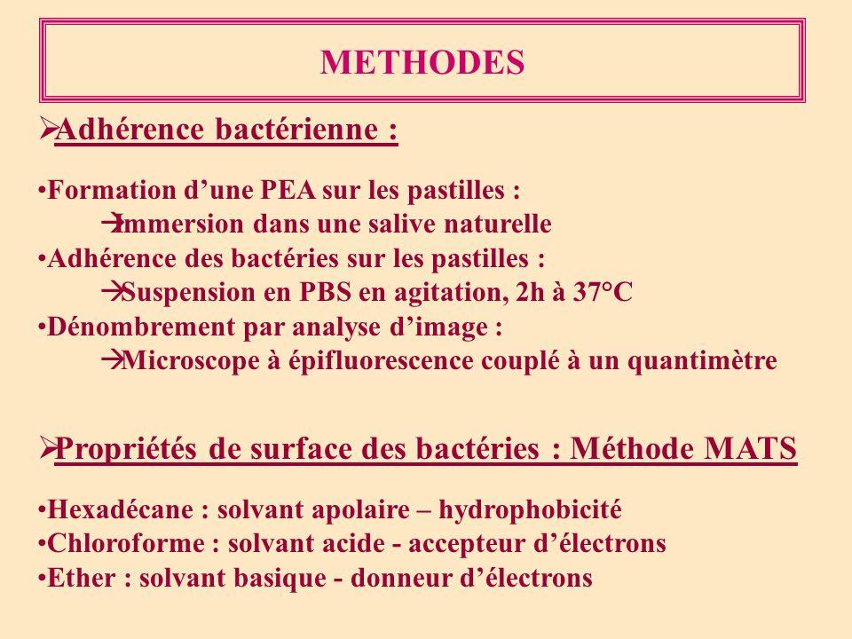 METHODES Adhérence bactérienne :