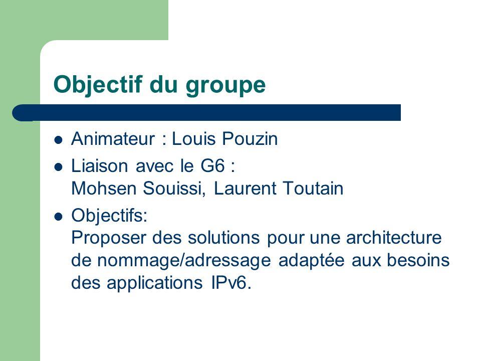Objectif du groupe Animateur : Louis Pouzin