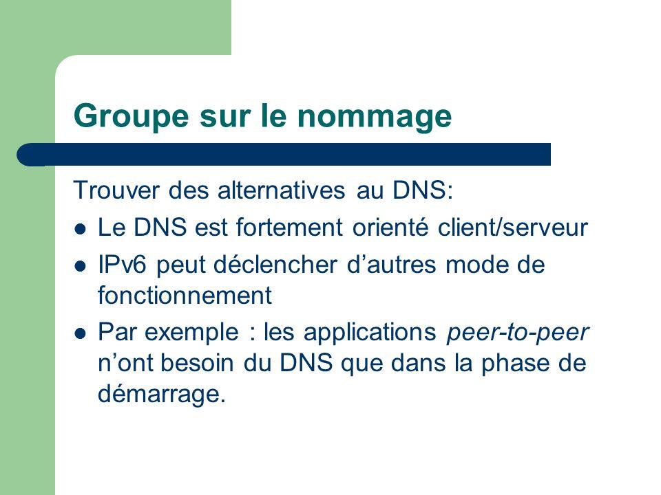 Groupe sur le nommage Trouver des alternatives au DNS: