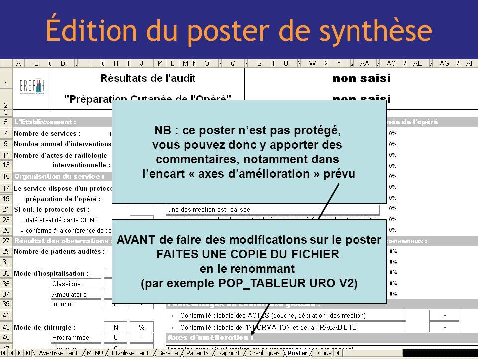 Édition du poster de synthèse