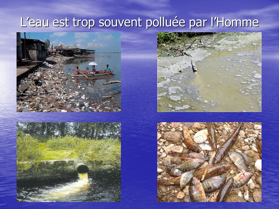 L'eau est trop souvent polluée par l'Homme