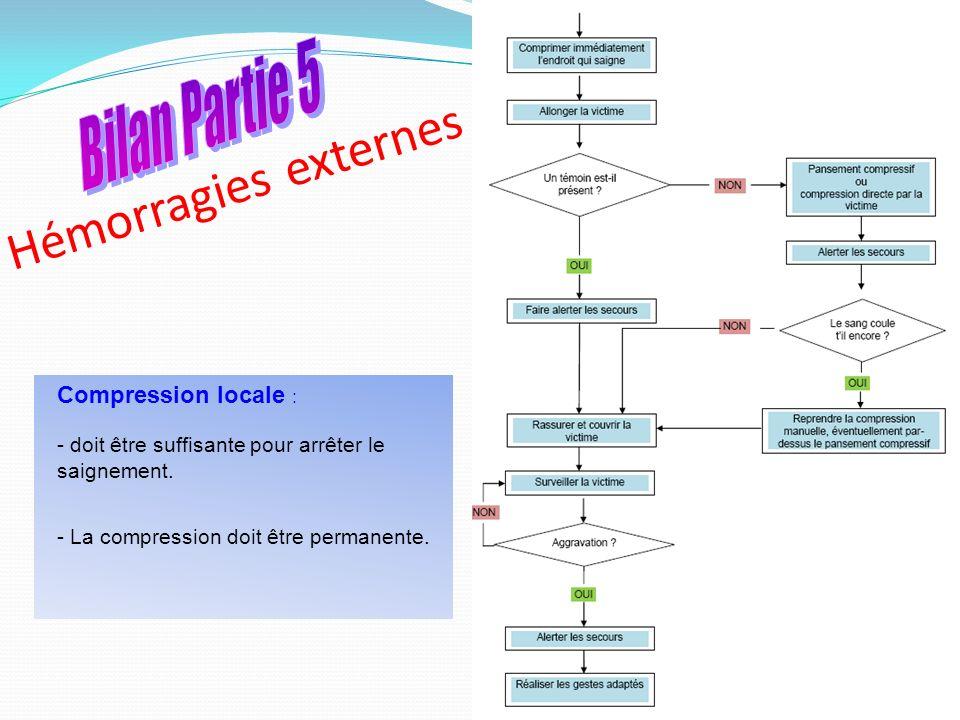 Hémorragies externes Bilan Partie 5 Compression locale :