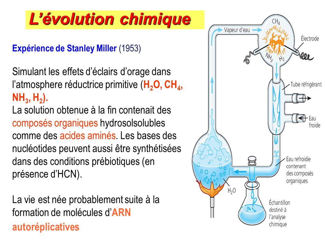 L'évolution chimique Expérience de Stanley Miller (1953)