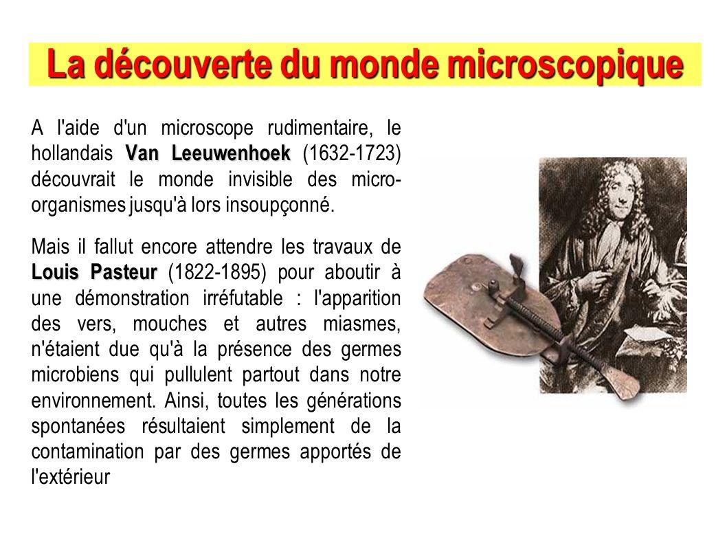 La découverte du monde microscopique