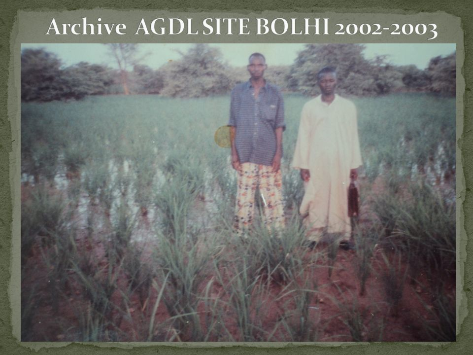 Archive AGDL SITE BOLHI 2002-2003