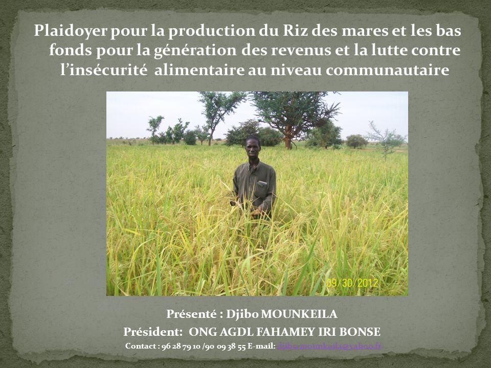 Plaidoyer pour la production du Riz des mares et les bas fonds pour la génération des revenus et la lutte contre l'insécurité alimentaire au niveau communautaire