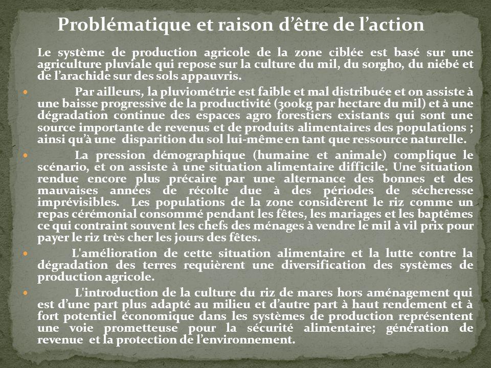 Problématique et raison d'être de l'action