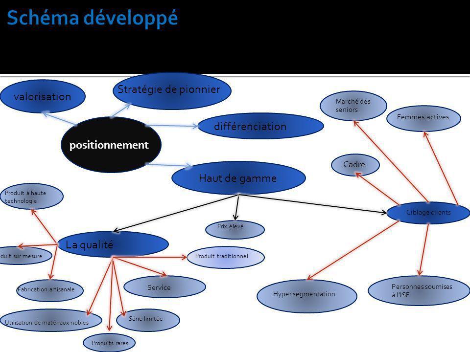 Schéma développé Stratégie de pionnier valorisation différenciation