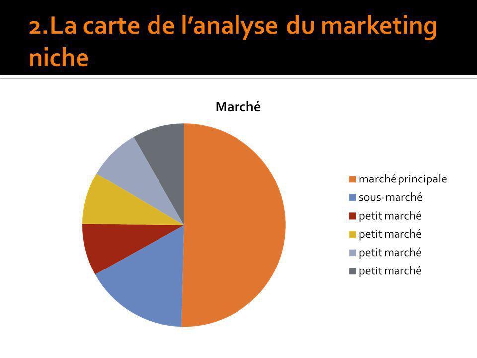 2.La carte de l'analyse du marketing niche