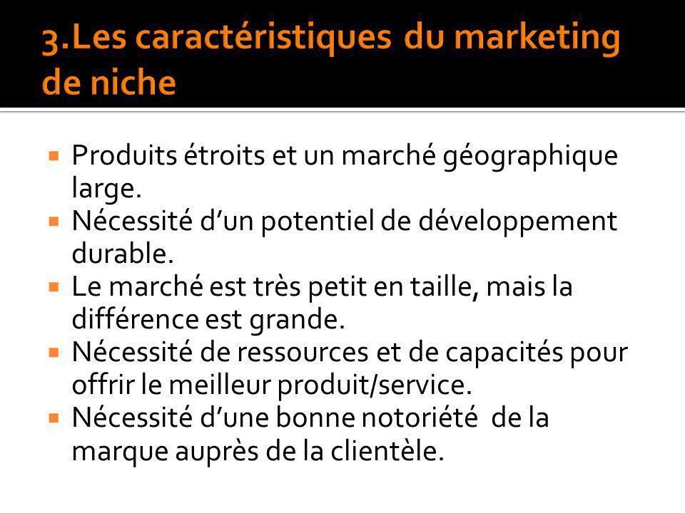 3.Les caractéristiques du marketing de niche