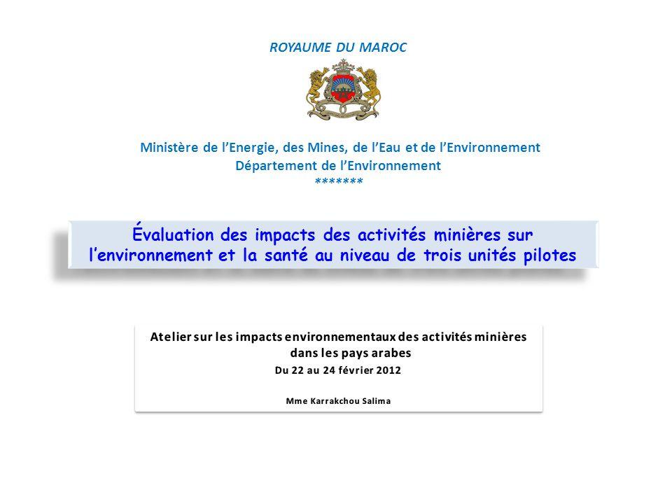 ROYAUME DU MAROC Ministère de l'Energie, des Mines, de l'Eau et de l'Environnement Département de l'Environnement *******