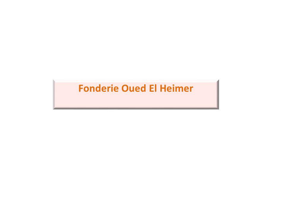 Fonderie Oued El Heimer