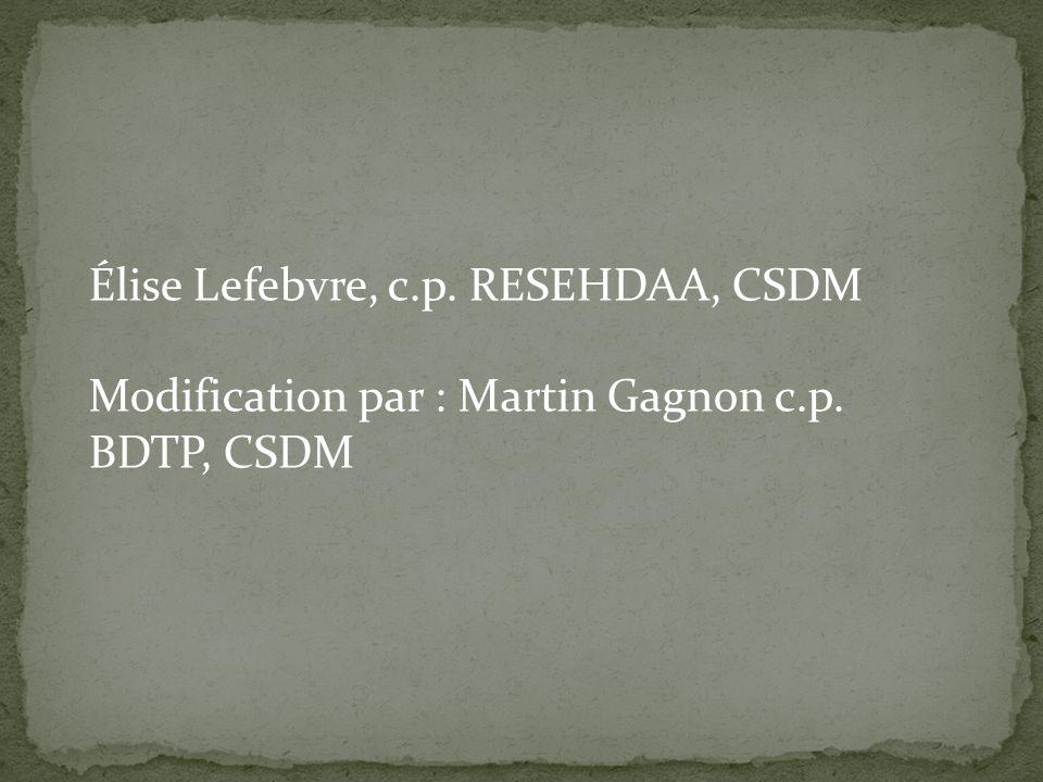 Élise Lefebvre, c.p. RESEHDAA, CSDM