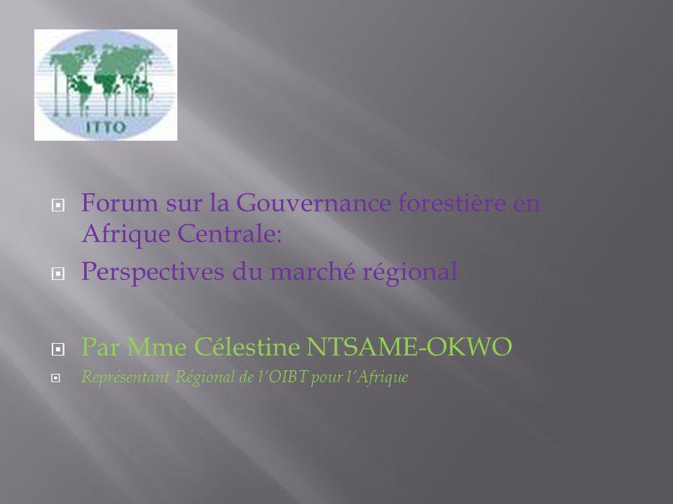 Forum sur la Gouvernance forestière en Afrique Centrale: