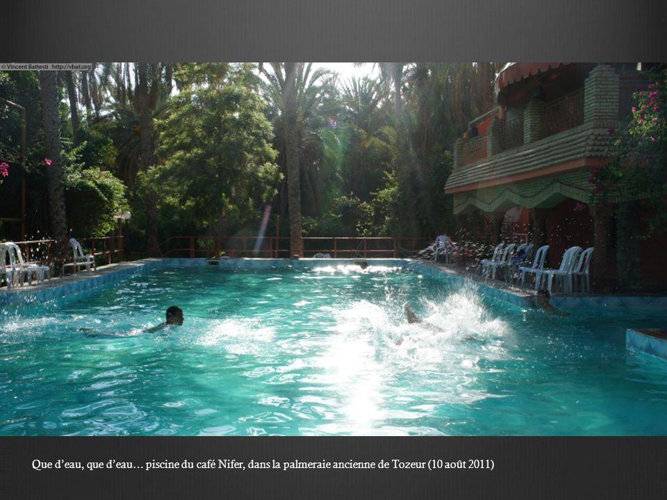 Que d'eau, que d'eau… piscine du café Nifer, dans la palmeraie ancienne de Tozeur (10 août 2011)
