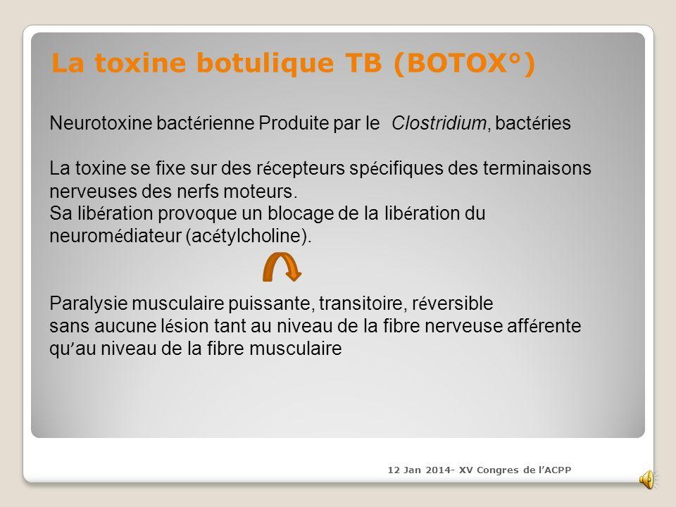 La toxine botulique TB (BOTOX°)