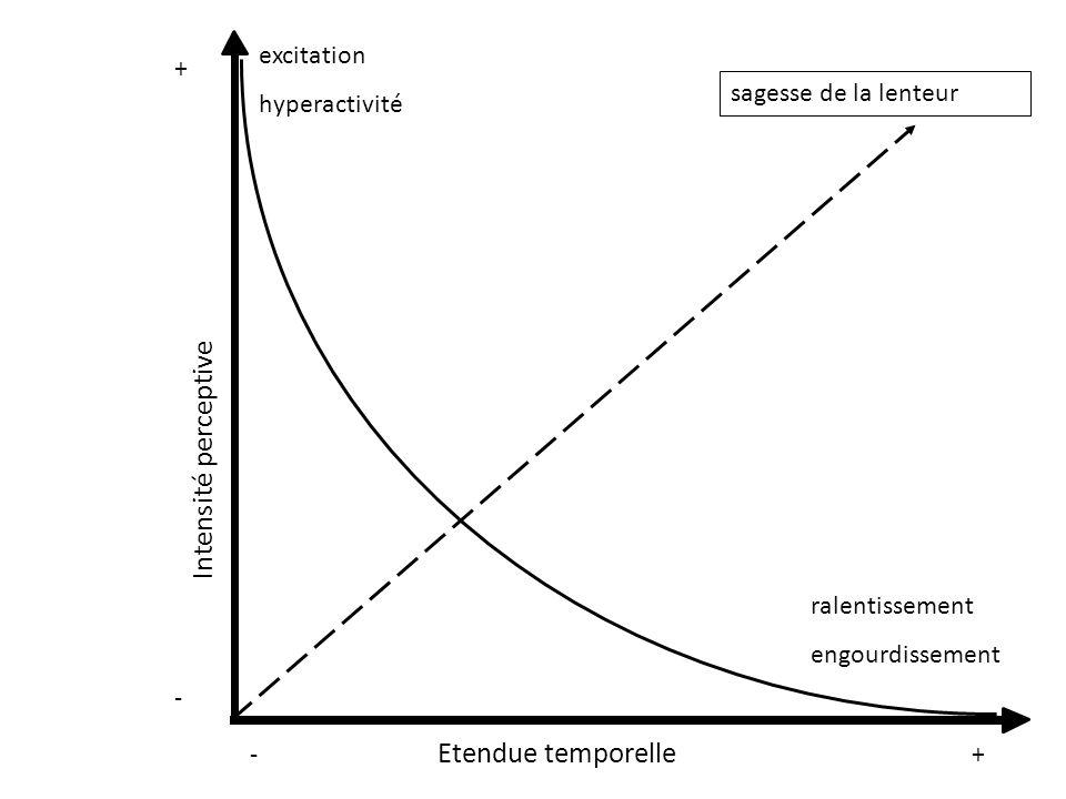 Intensité perceptive Etendue temporelle excitation hyperactivité +