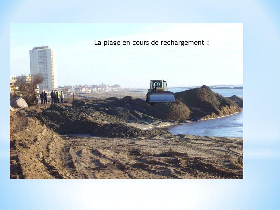 La plage en cours de rechargement :