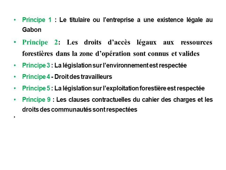 m Principe 1 : Le titulaire ou l'entreprise a une existence légale au Gabon.