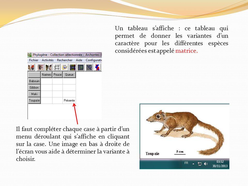 Un tableau s'affiche : ce tableau qui permet de donner les variantes d'un caractère pour les différentes espèces considérées est appelé matrice.