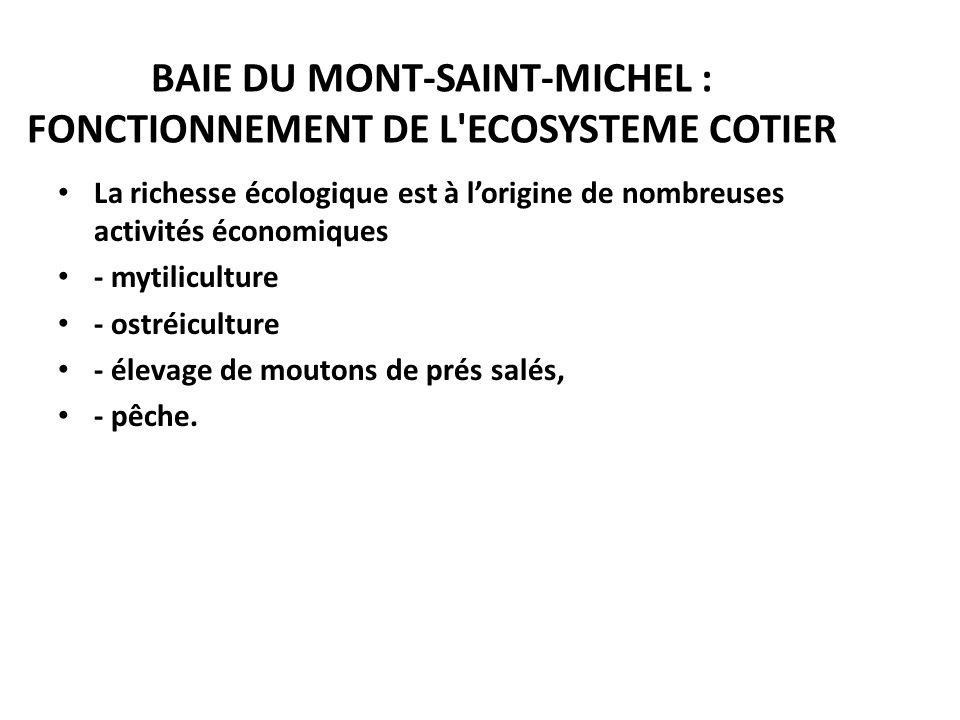 BAIE DU MONT-SAINT-MICHEL : FONCTIONNEMENT DE L ECOSYSTEME COTIER