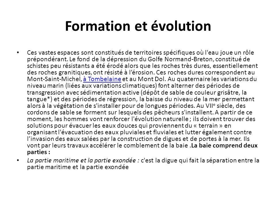 Formation et évolution