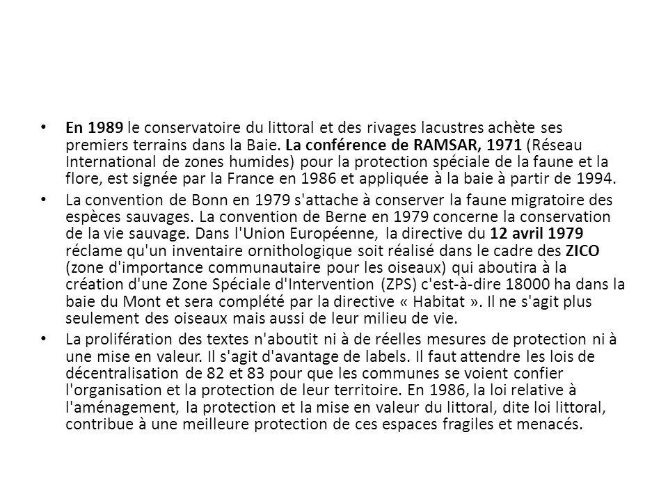 En 1989 le conservatoire du littoral et des rivages lacustres achète ses premiers terrains dans la Baie. La conférence de RAMSAR, 1971 (Réseau International de zones humides) pour la protection spéciale de la faune et la flore, est signée par la France en 1986 et appliquée à la baie à partir de 1994.