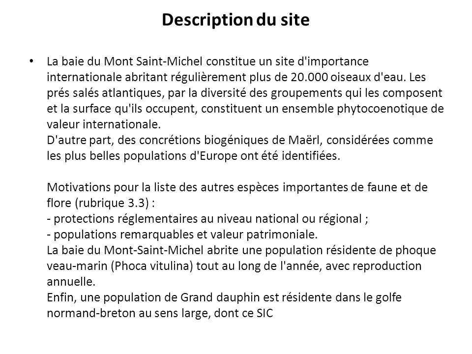 Description du site