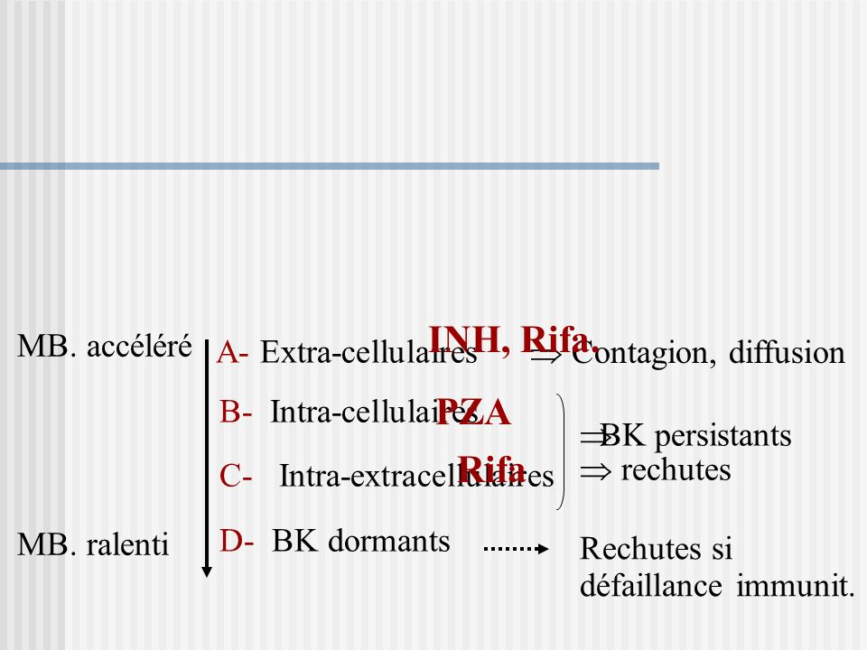 A- Extra-cellulaires INH, Rifa. PZA Rifa B- Intra-cellulaires