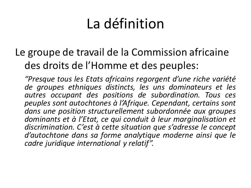 La définition Le groupe de travail de la Commission africaine des droits de l'Homme et des peuples: