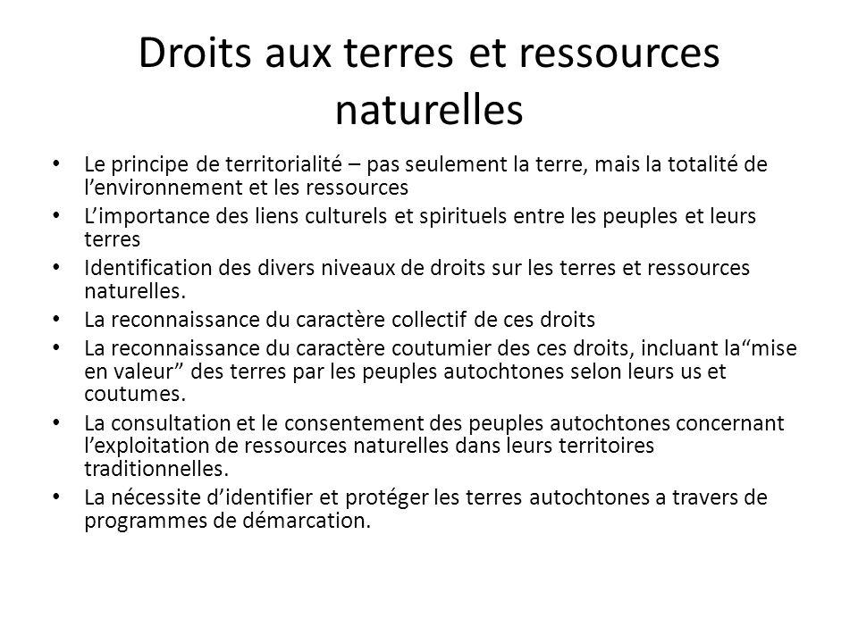Droits aux terres et ressources naturelles