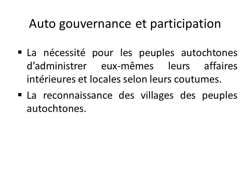 Auto gouvernance et participation
